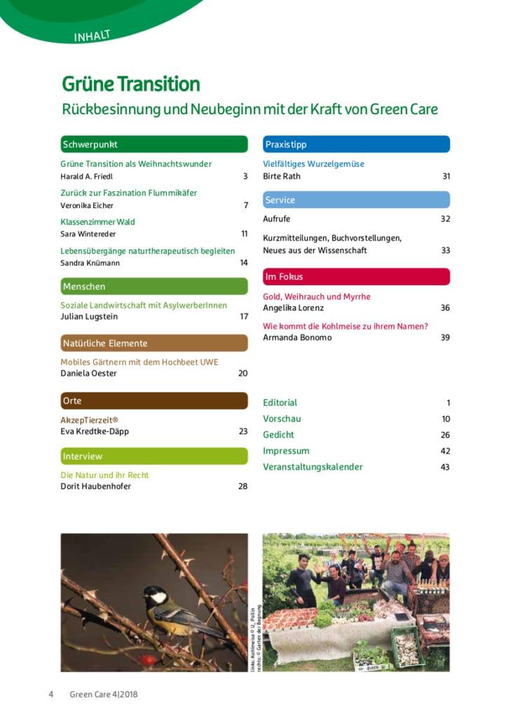 Grüne Transition – Ausgabe 4/2018 Inhaltsverzeichnis