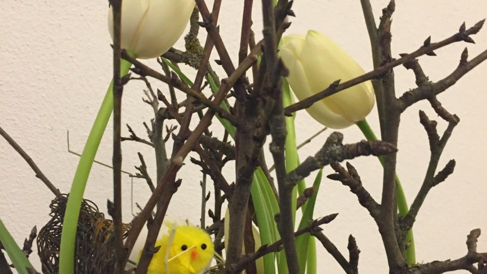 Onlineworkshop 26.3. Luftig, parallel, überproportional. Ein Gesteck mit Frühlingsblumen und Nest (Asthaus, Wien)